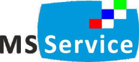logo mssservice blog